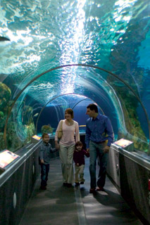 Key West Hotels >> Mall of America/Tourism & Entertainment :: Triple Five